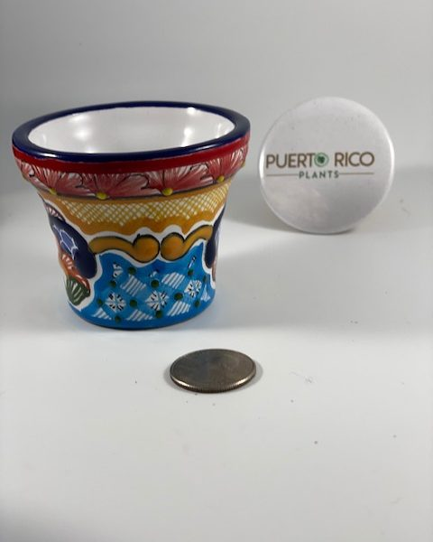 Traditional Talavera Pottery (Mexico) G
