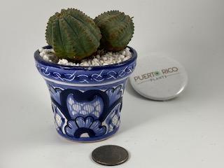 Double-Headed Obesa (FEMALE) in Traditional Talavera Pottery (Mexico)