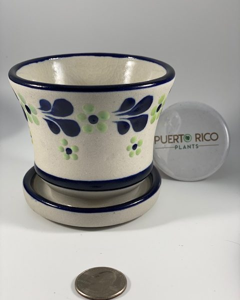 Textured Planter and Tray (B) (Mexico)