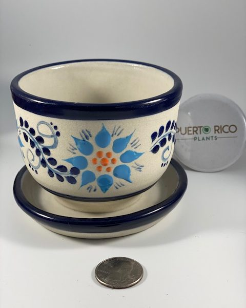 Textured Planter and Tray (C) (Mexico)